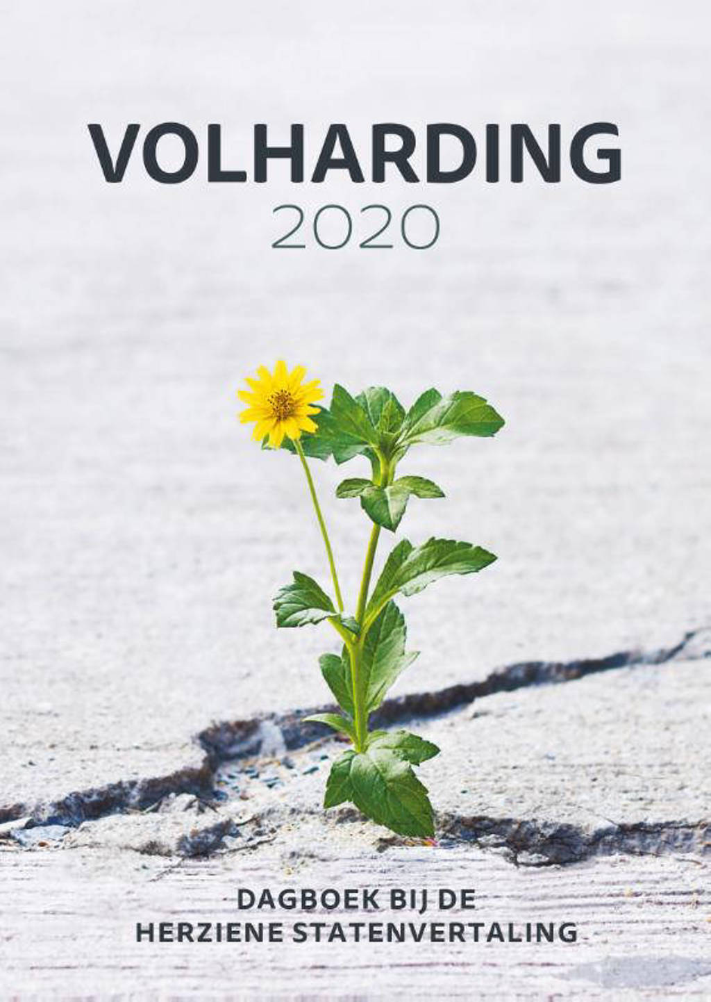 Volharding 2020