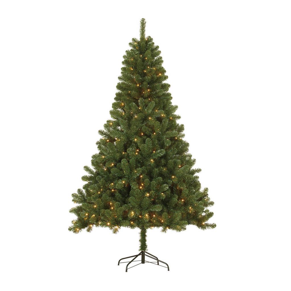 Black Box verlichte kerstboom Canmore (h120 x ø76 cm), Groen