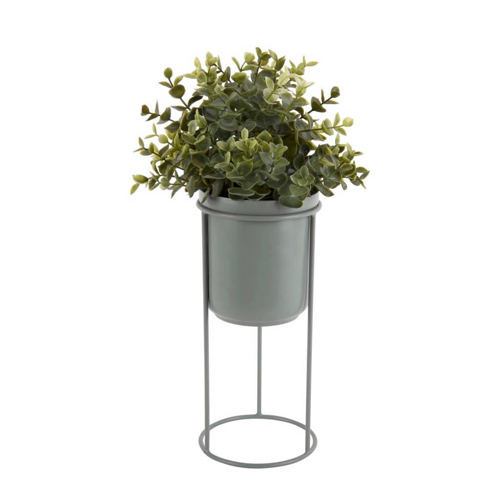 pt, bloempot Tub, Groen