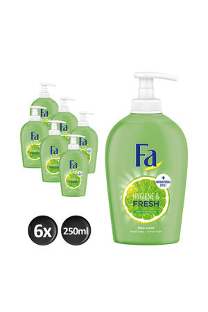 Liquid Soap Hygiene&Fresh - 6x 250ml multiverpakking