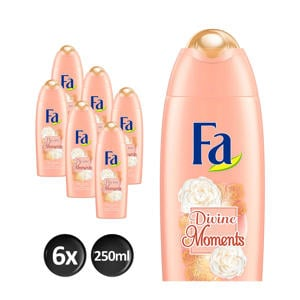 Divine Moments douchegel - 6x 250ml multiverpakking