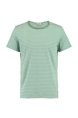 gemêleerd T-shirt white/green