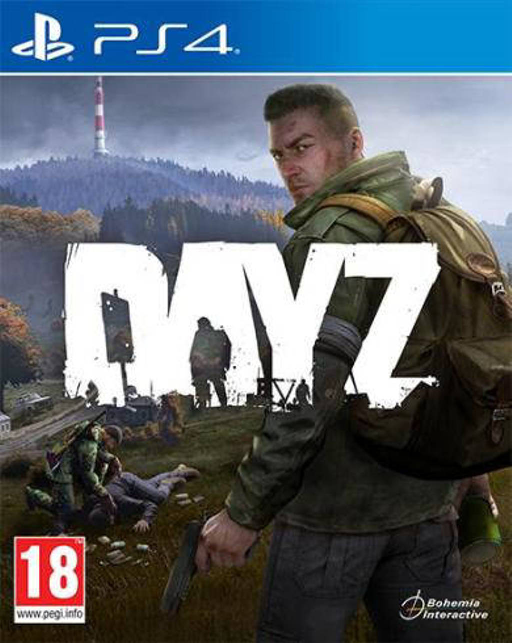 DayZ (PlayStation 4)
