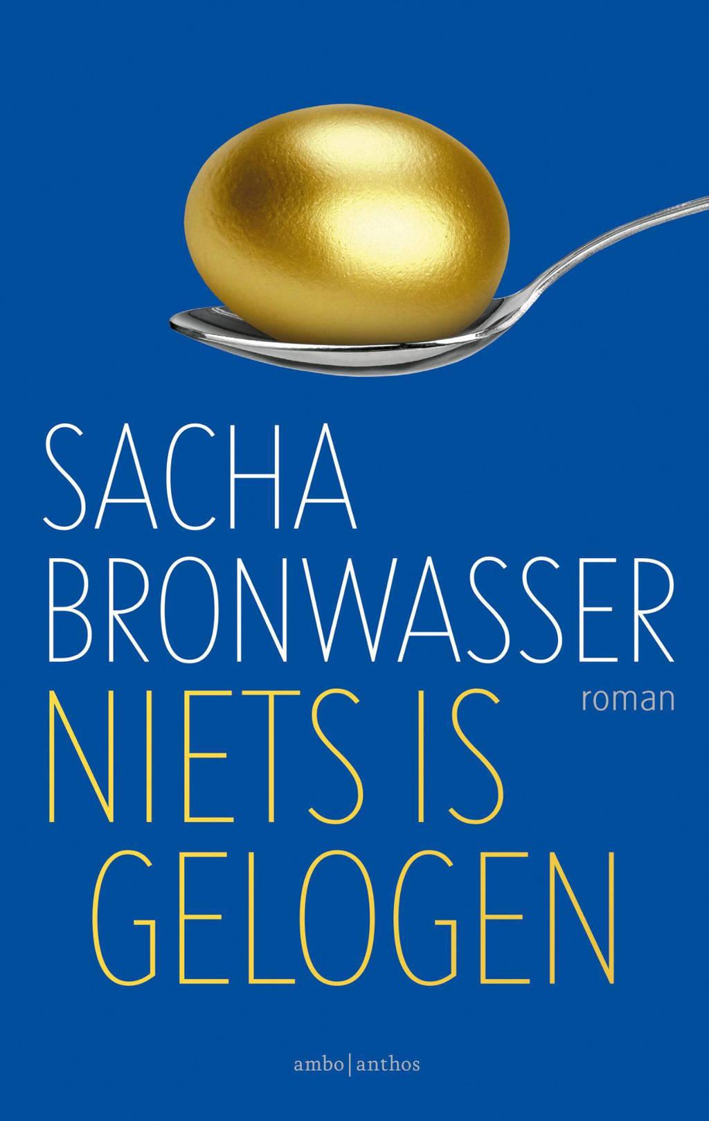 Niets is gelogen - Sacha Bronwasser