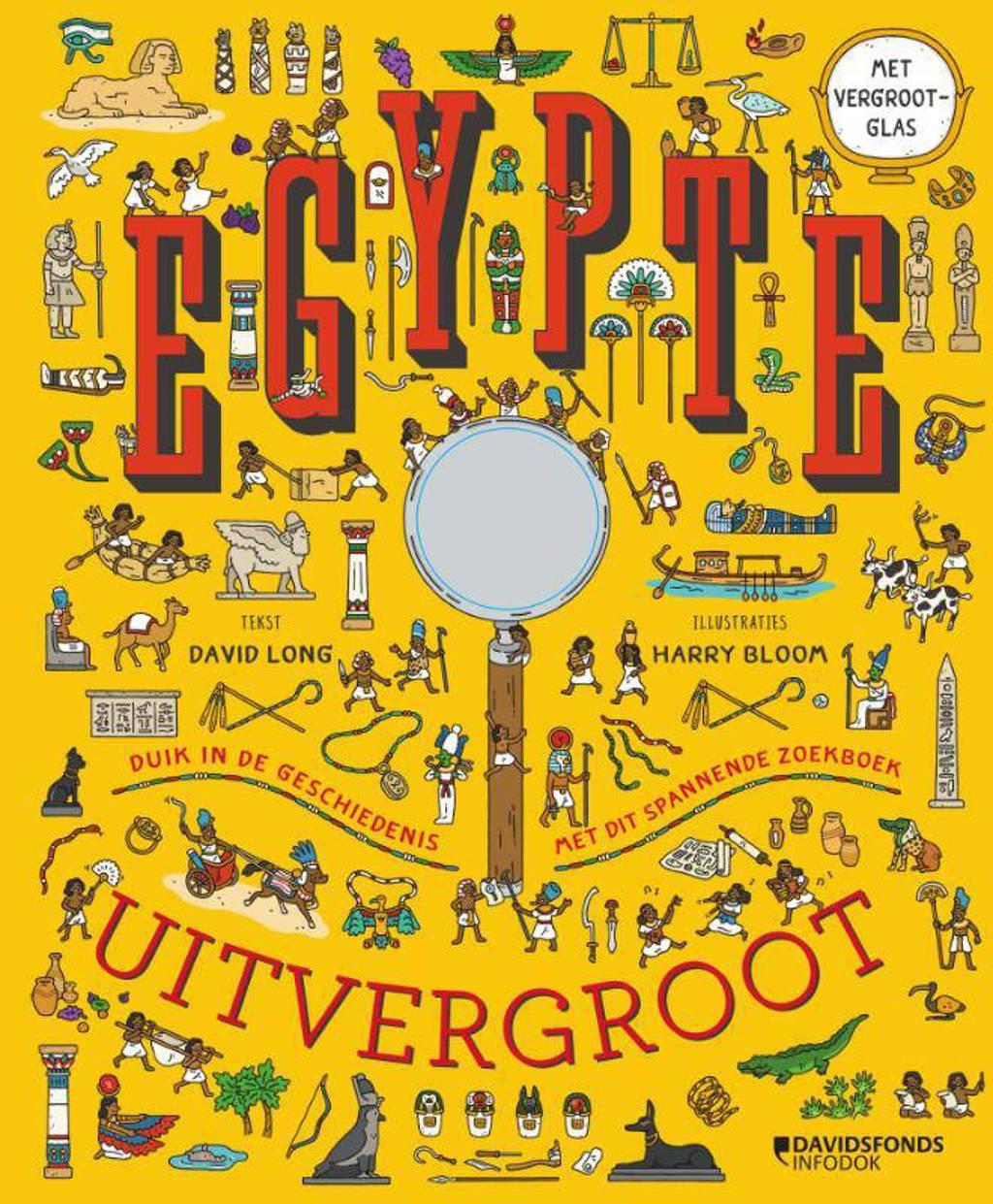 Egypte uitvergroot - David Long