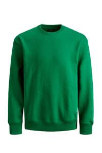 JACK & JONES JUNIOR sweater Soft groen, Groen