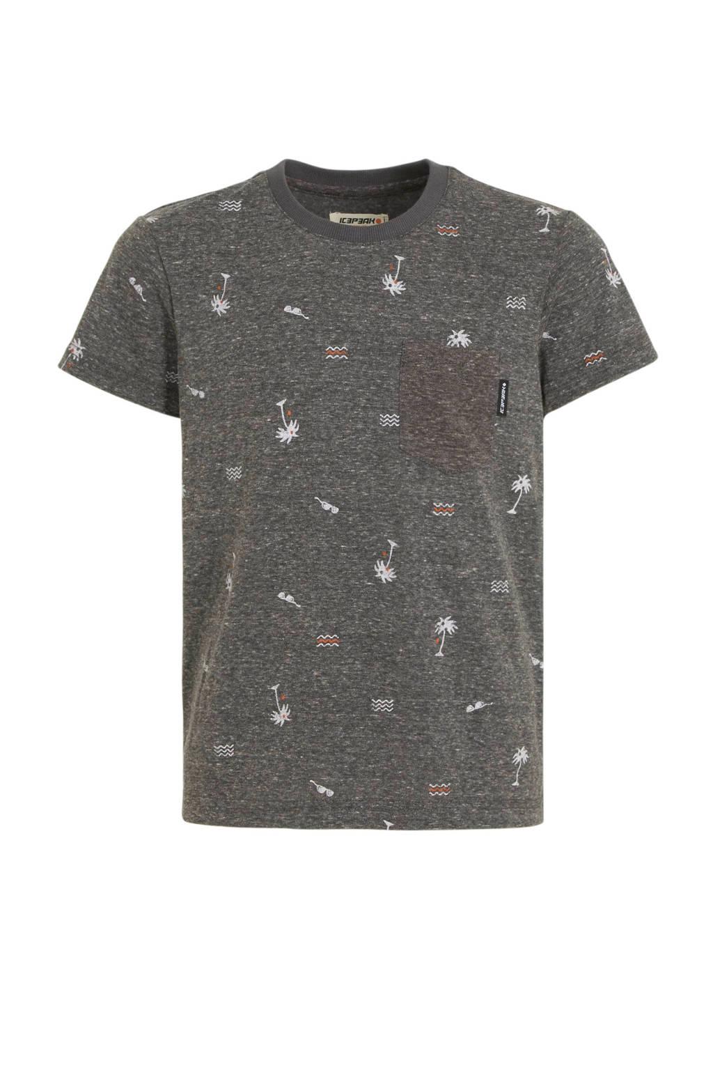 Icepeak outdoor T-shirt Mauldin grijs, Grijs