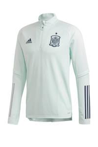 adidas Senior Spanje voetbalshirt training EK2020, Mintgroen