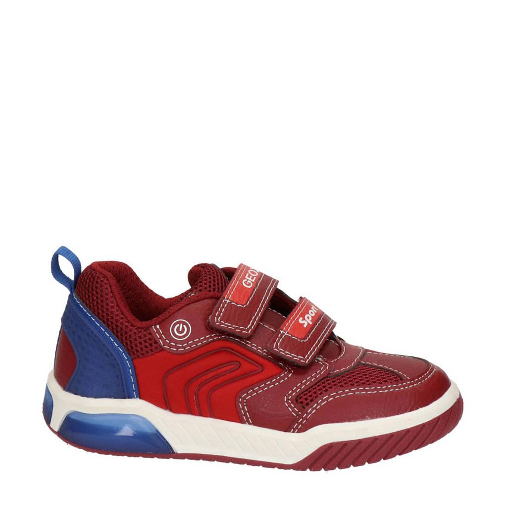 Geox Inek Boy  sneakers met lichtjes rood, Rood/blauw