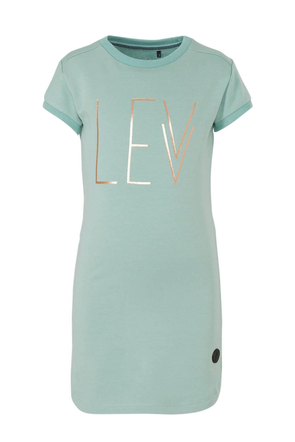 LEVV jersey jurk Gaia met printopdruk mintgroen/goud, Mintgroen/goud