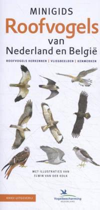 Minigids: Minigids Roofvogels van Nederland en België - Jip Louwe Kooijmans