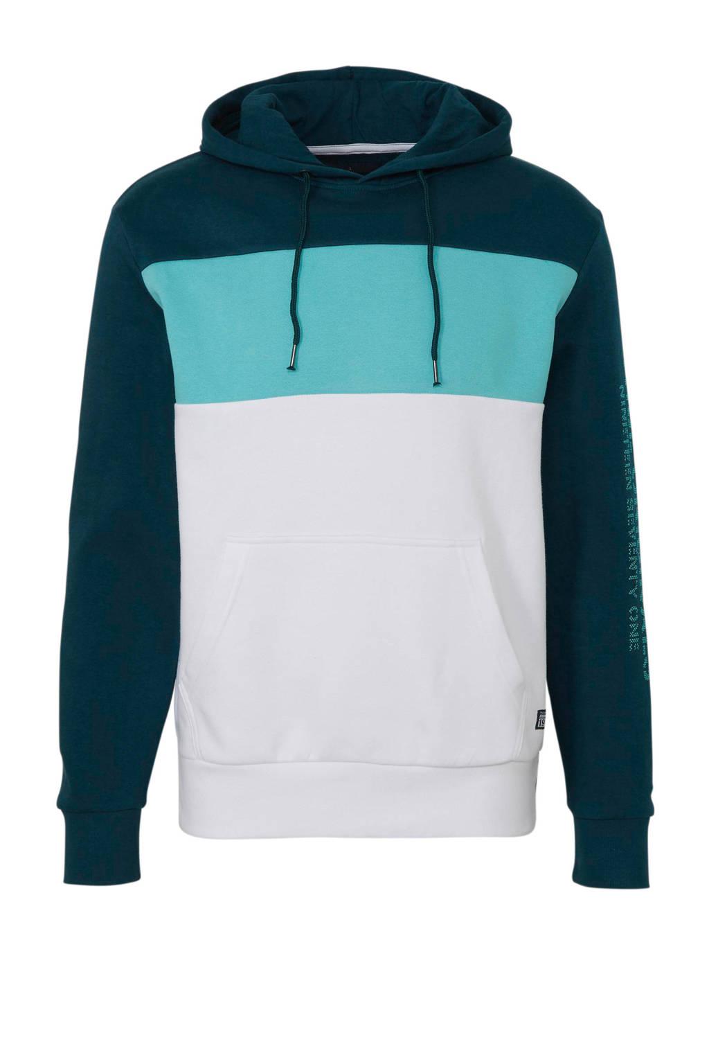 C&A Angelo Litrico hoodie met biologisch katoen groen/turquoise/wit, Groen/turquoise/wit