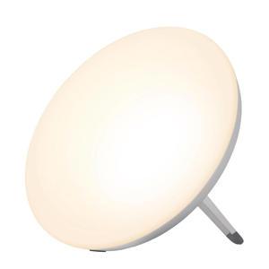 LT 500 Energy light daglichtlamp