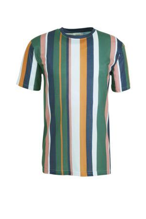 T-shirt groen/blauw/roze/wit