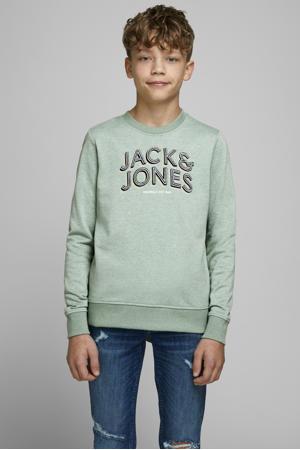 sweater Venicebeach met logo mintgroen