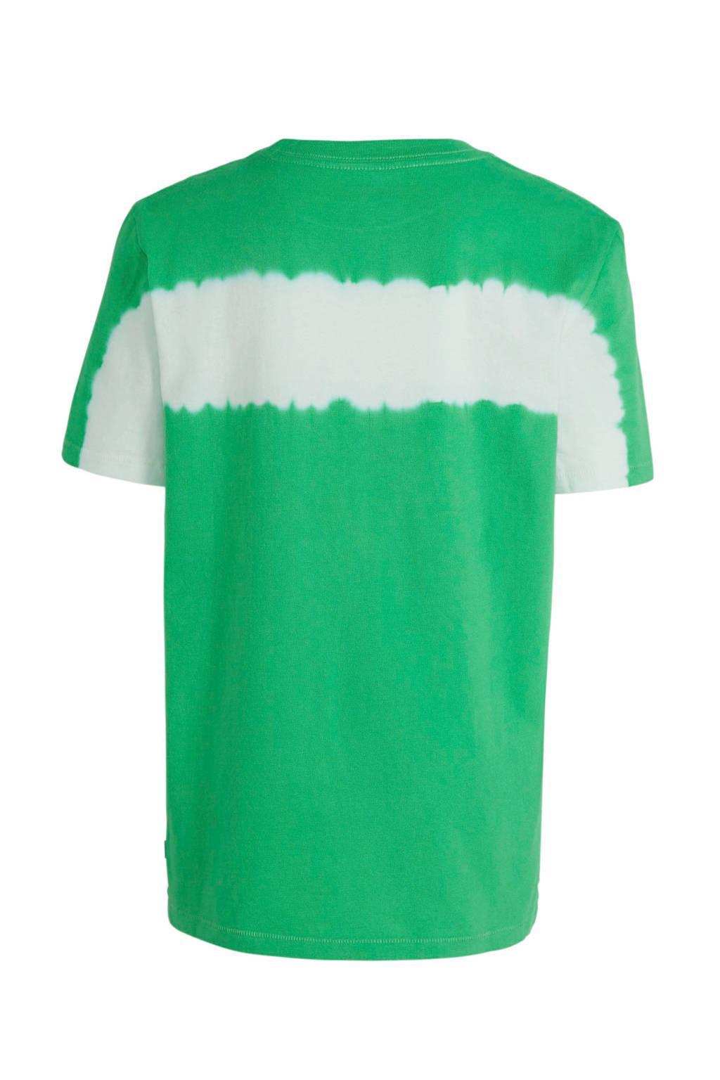 GAP T-shirt groen/wit, Groen/wit