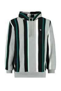 America Today gestreepte hoodie multi colour, MULTI COLOUR