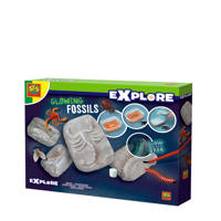 SES Explore  Glowing fossils