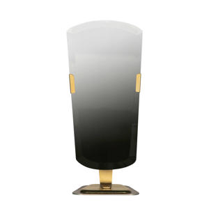 spiegel Arrogant (41x19 cm)