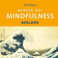 Werken met Mindfulness - E. Maex