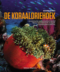 De koraaldriehoek - Ken Kassem en Eric Madeja