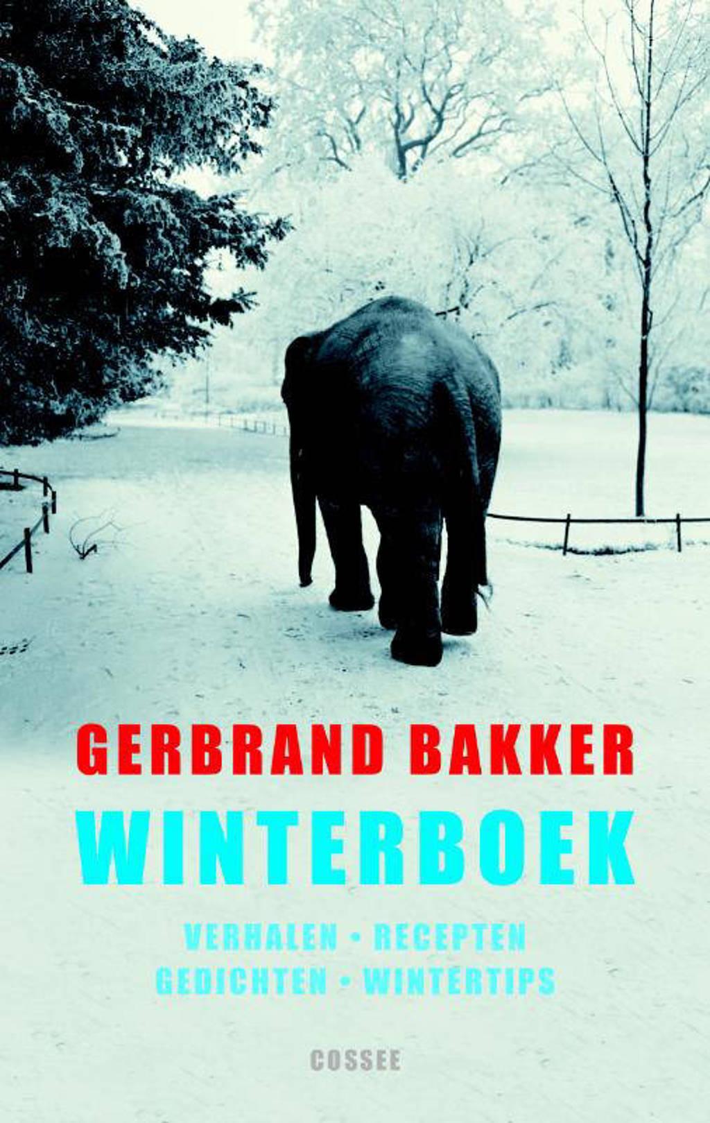 Winterboek - Gerbrand Bakker
