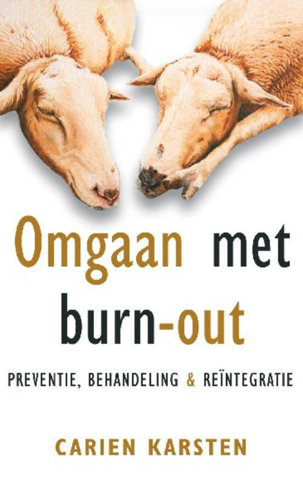 Omgaan met burn-out - Carien Karsten