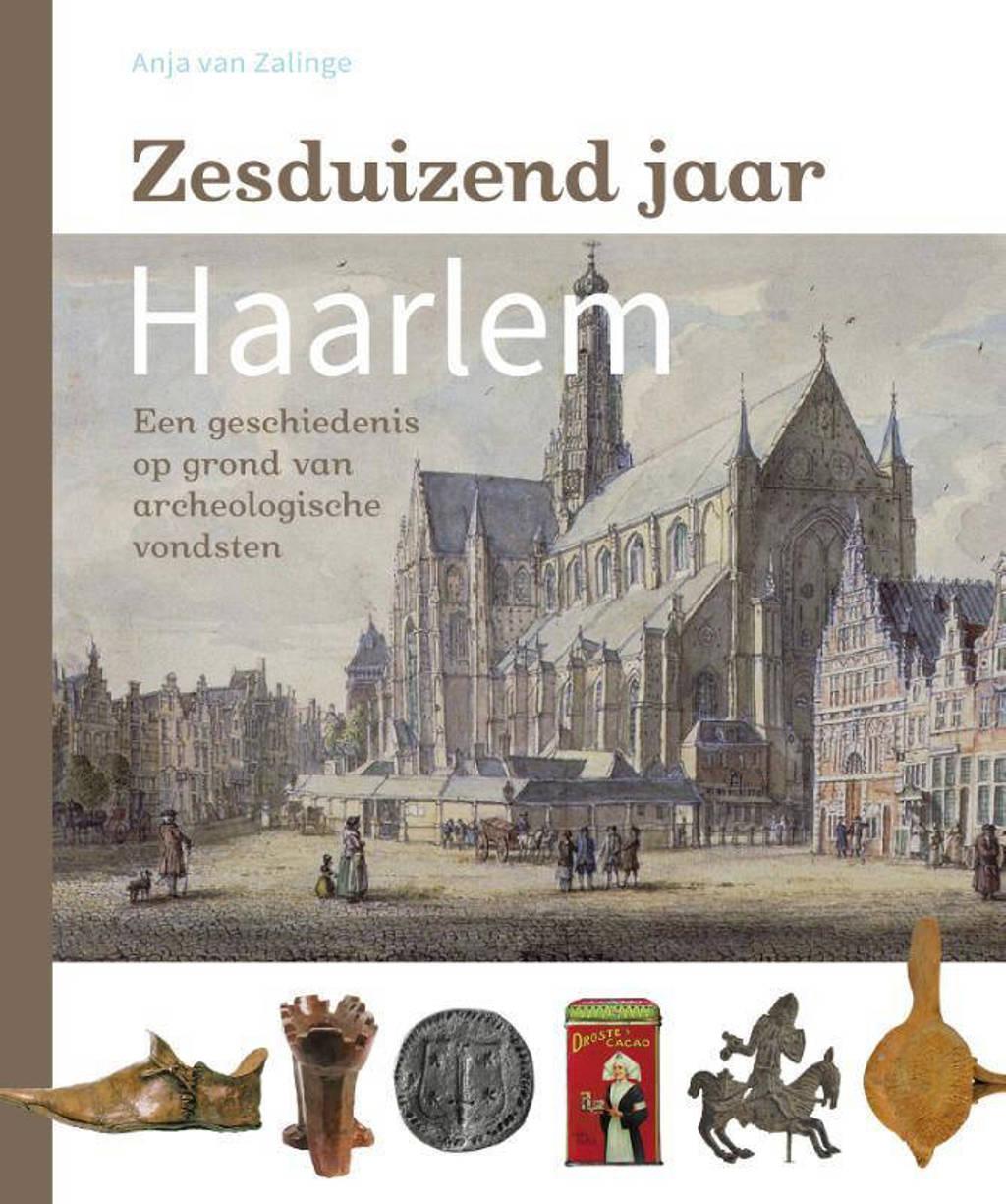 Zesduizend jaar Haarlem - Anja van Zalinge