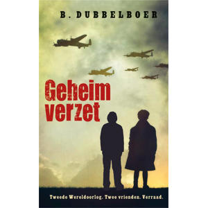 Geheim verzet - B. Dubbelboer