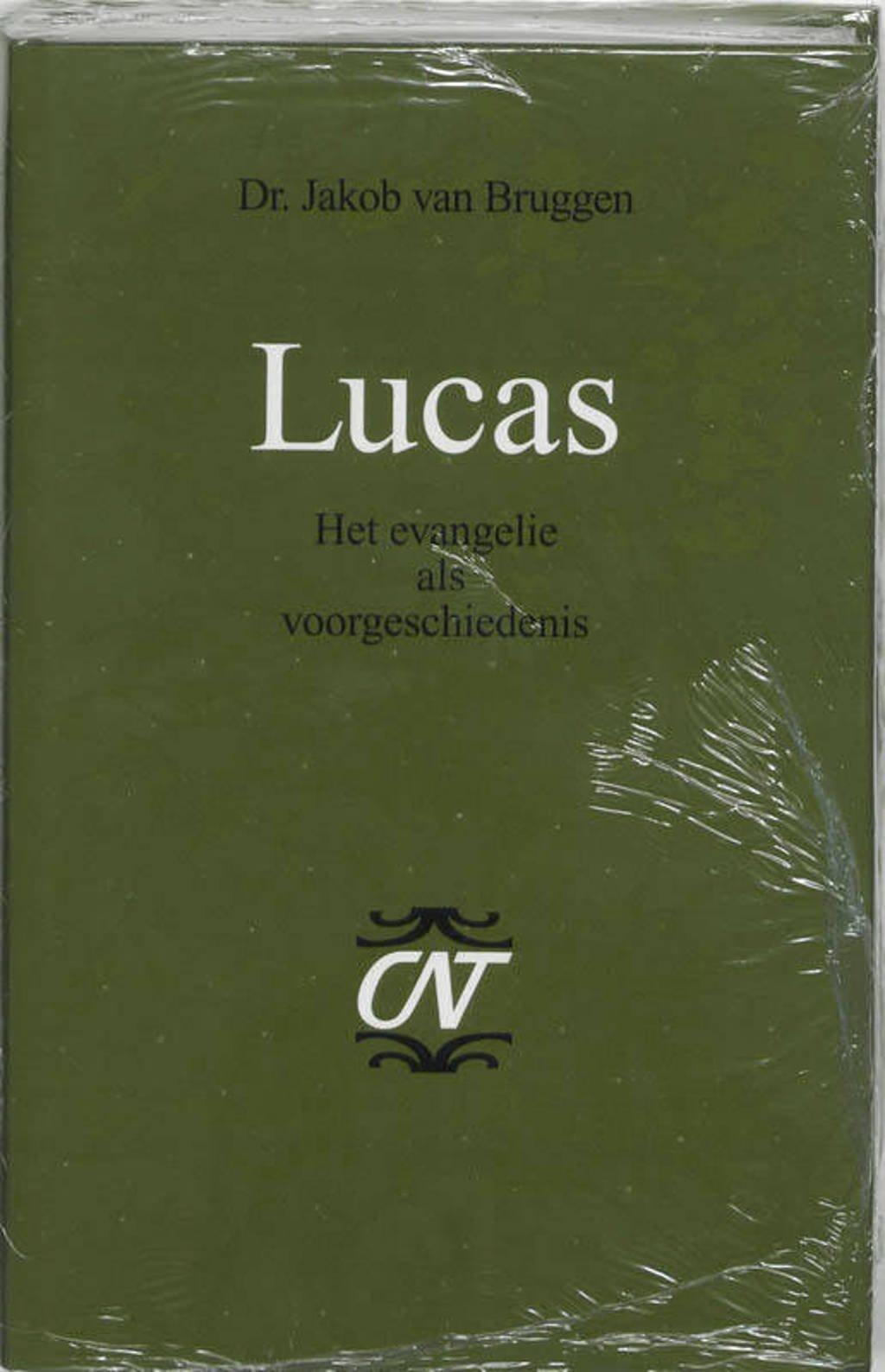 Commentaar op het Nieuwe Testament Derde serie Afdeling Evangelien: Lucas - Jacob van Bruggen