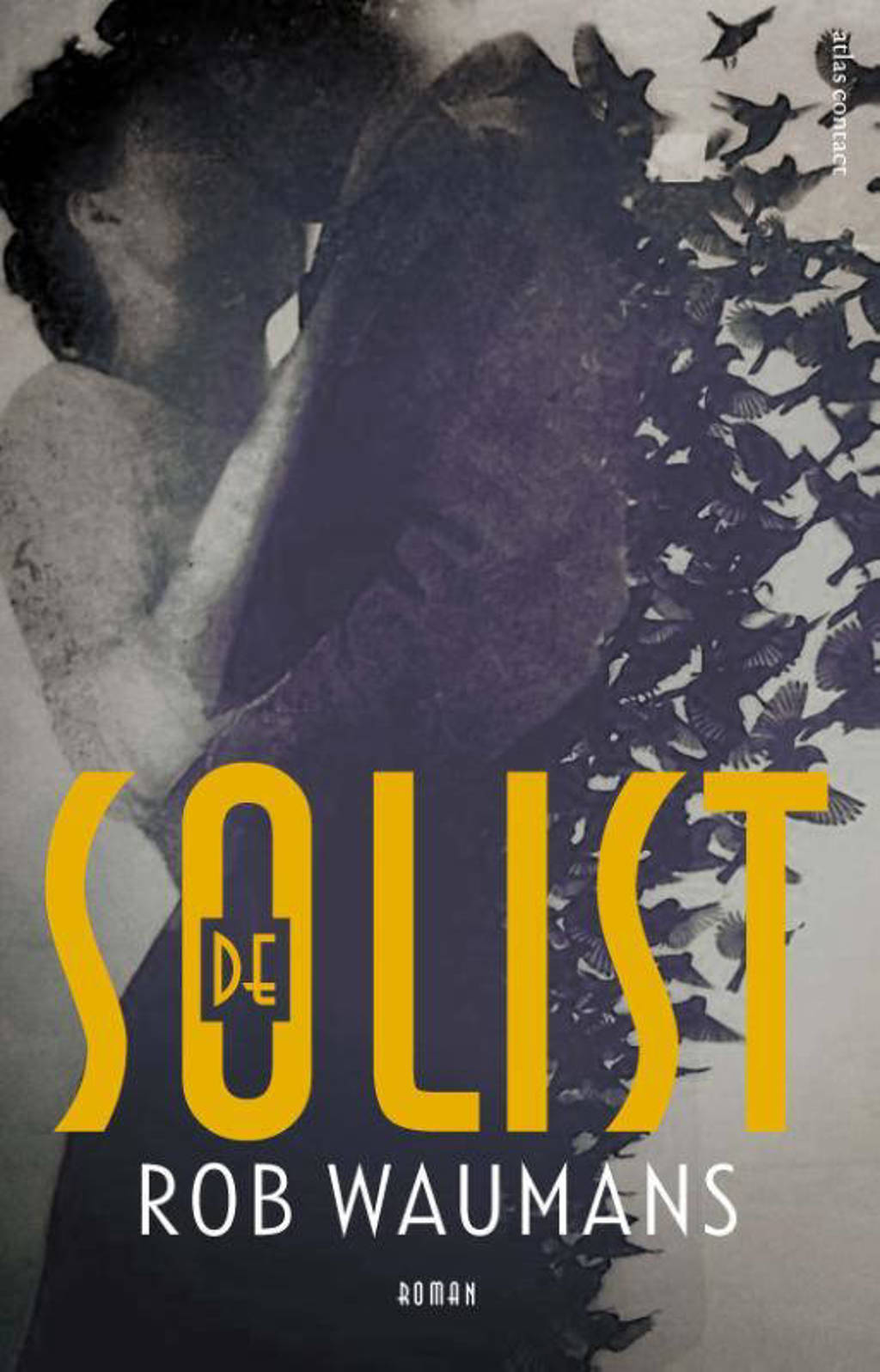 De solist - Rob Waumans