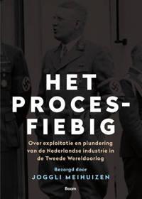 Het Proces-Fiebig - Joggli Meihuizen
