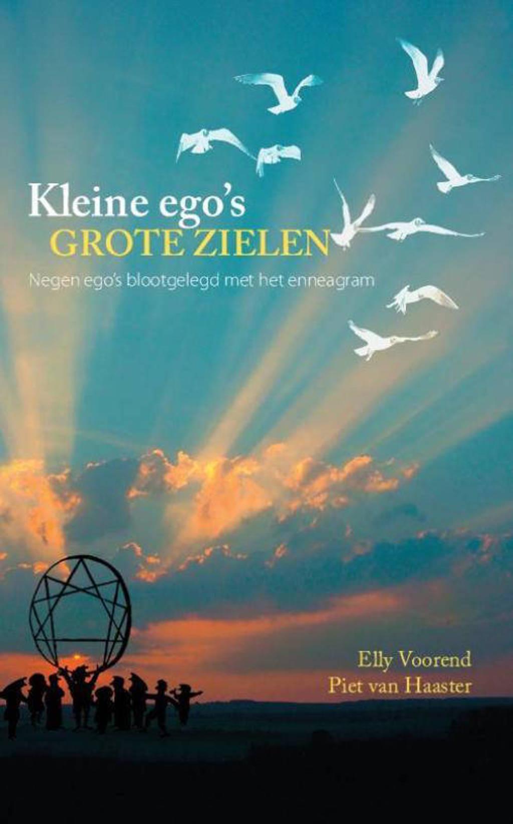 Kleine ego's, grote zielen - Elly Voorend en Piet van Haaster