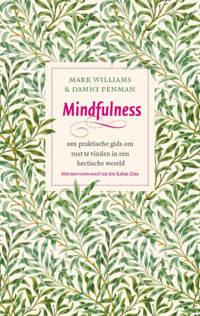 Mindfulness - Mark Williams en Danny Penman