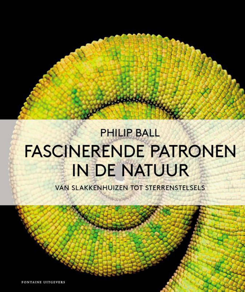 Fascinerende patronen in de natuur - Philip Ball
