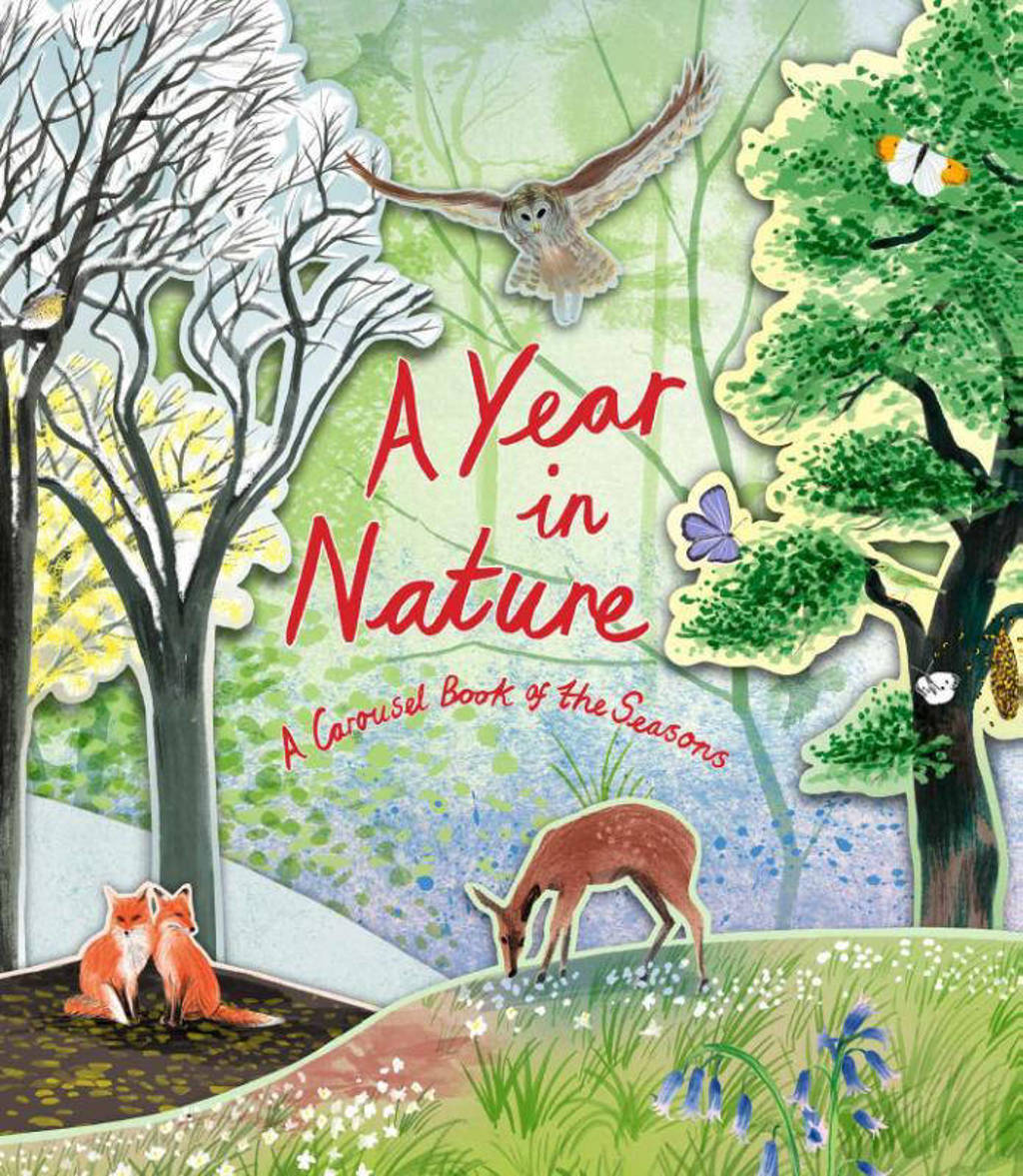 A Year in Nature - Maskell, Hazel Maskell