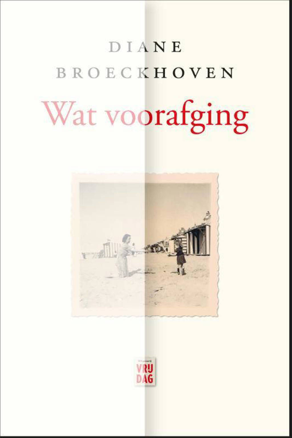 Wat voorafging - Diane Broeckhoven