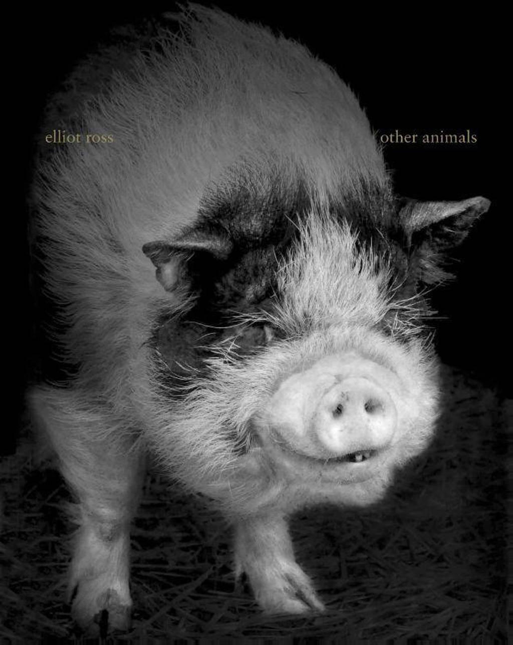 Other animals - Elliot Ross