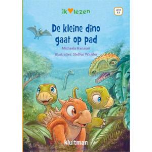 De kleine Dino gaat op pad - Michaela Hanauer