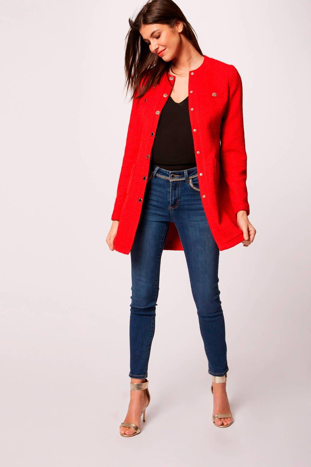 Morgan coat rood, Rood