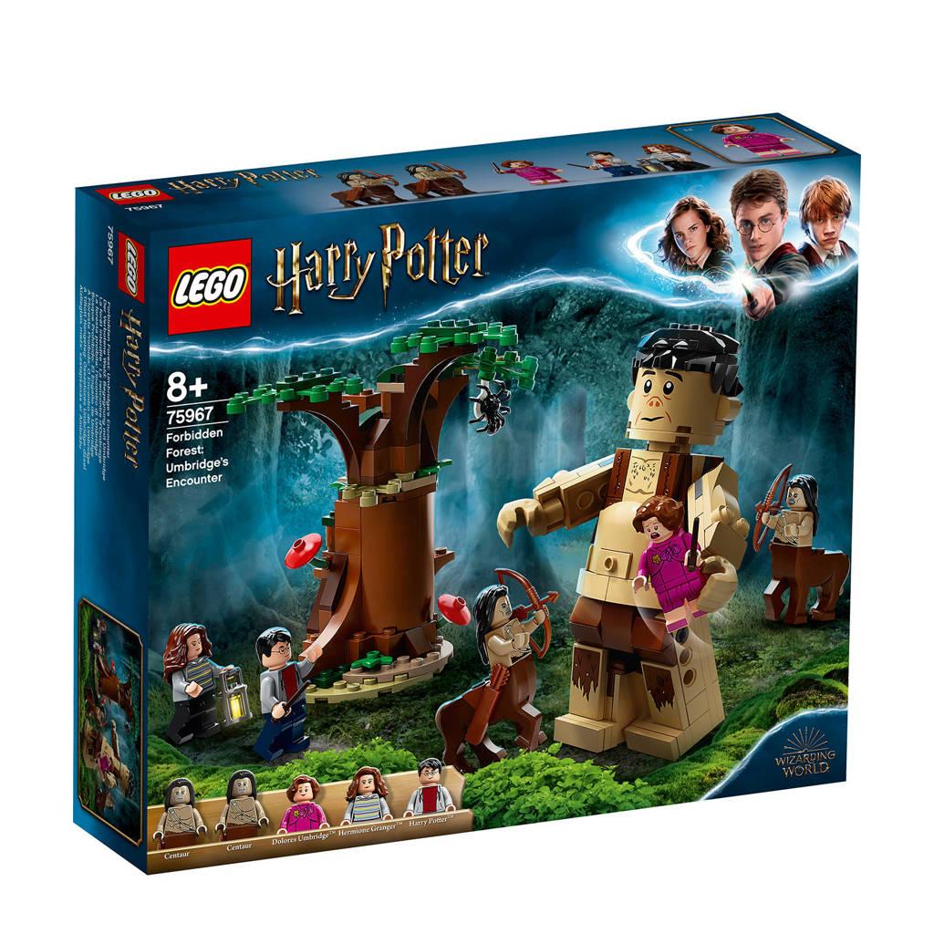 LEGO Harry Potter Het Verboden Bos 75967