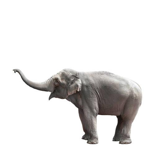 Elephant muursticker