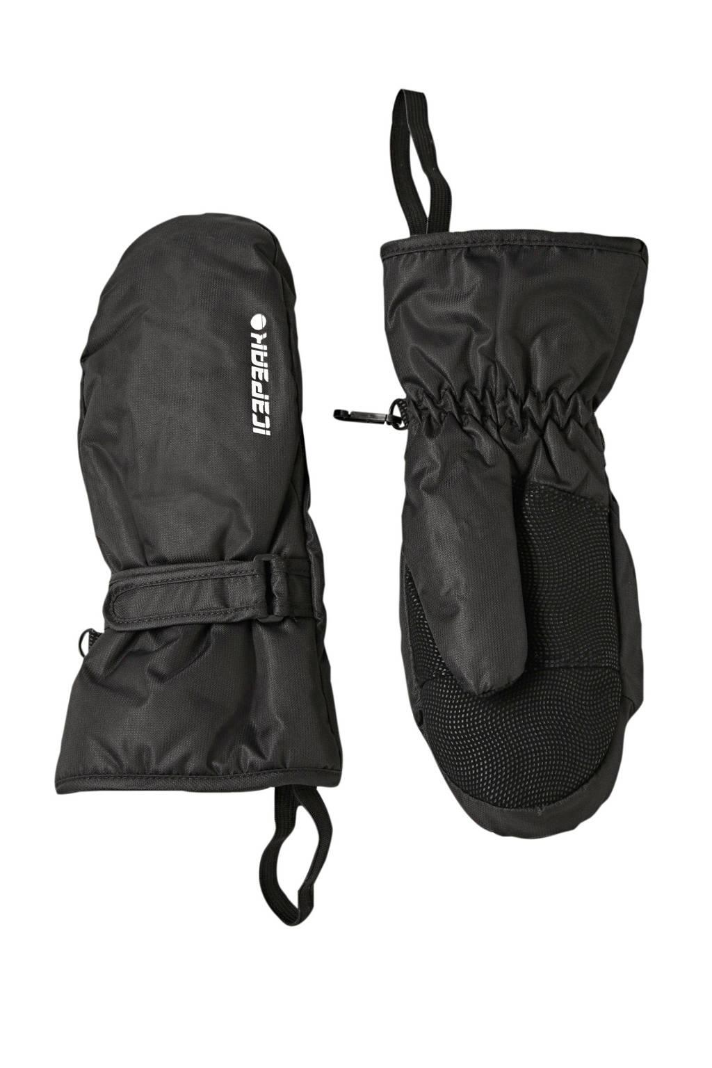 Icepeak Haysville Jr. skihandschoenen zwart, Zwart