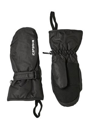 Haysville Jr. skihandschoenen zwart