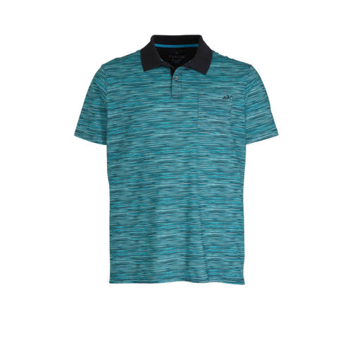 C&A Canda gem??leerde regular fit polo blauw/d