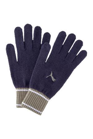 handschoenen donkerblauw/grijs
