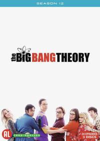 Big Bang Theory - Seizoen 12 (DVD)