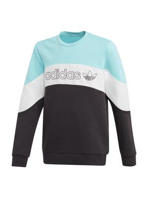 sweater lichtblauw/zwart