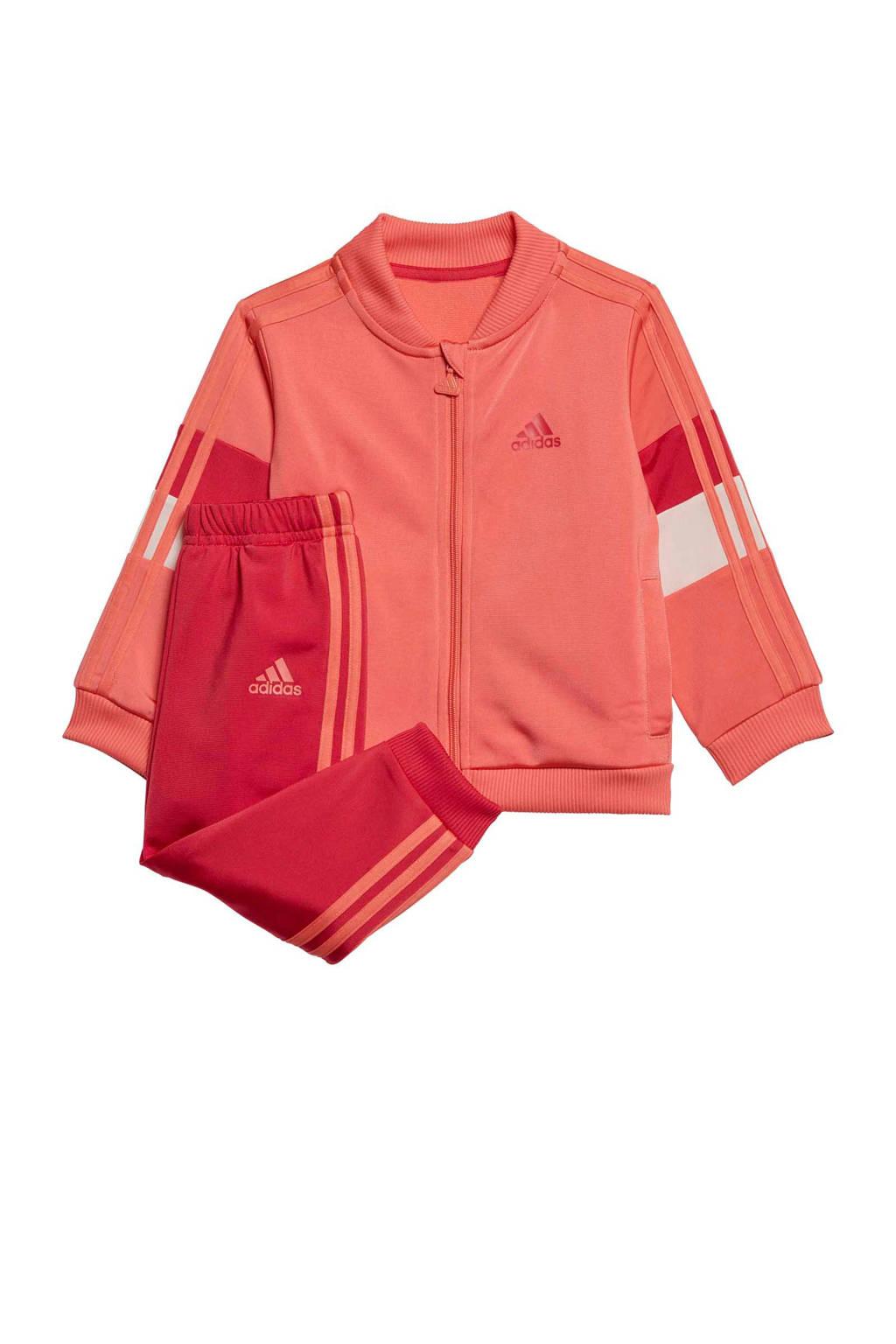 adidas Performance   trainingspak oudroze/rood, Oudroze/rood