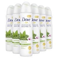Dove Women Matcha & Sakura anti-transpirant spray - 6 x 150 ml